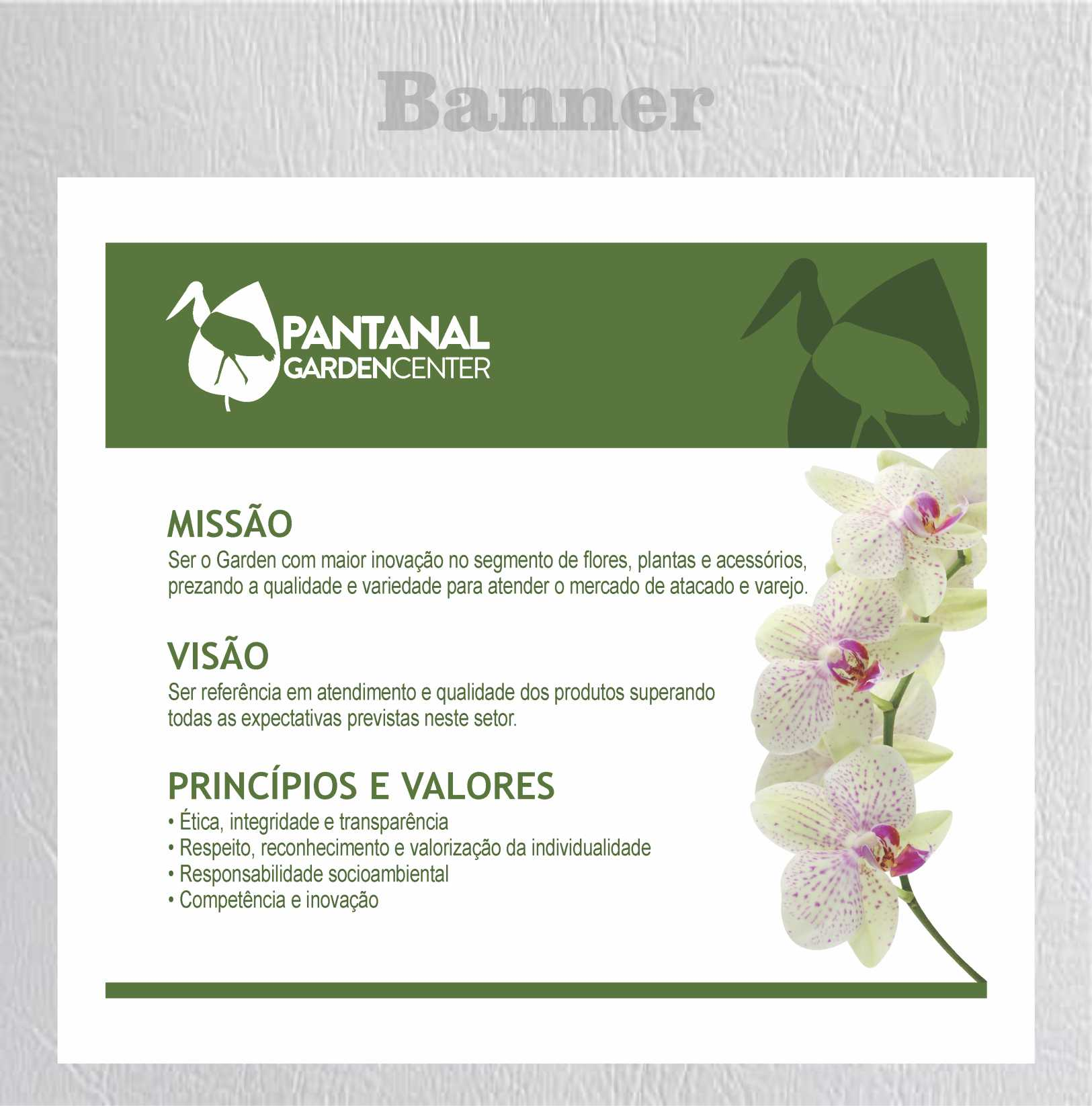 Pantanal banner
